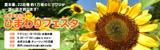 万博記念公園ひまわりフェスタ|2018年7月21日(土曜日)から8月12日(日曜日)まで ※水曜休園|時間:9時30分から17時まで(入園は16時30分まで)|場所:自然文化園 チューリップの花園