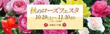 秋のローズフェスタ|開催日時:2019年10月19日(土曜日)から11月10日(日曜日)※10月・11月は無休|開催場所:平和のバラ園