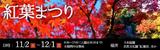 紅葉まつり|開催日時:2019年11月2日(土曜日)から12月1日(日曜日)※期間中無休 9時30分から17時(入園は16時30分まで)|開催場所:日本庭園、自然文化園「紅葉渓」ほか