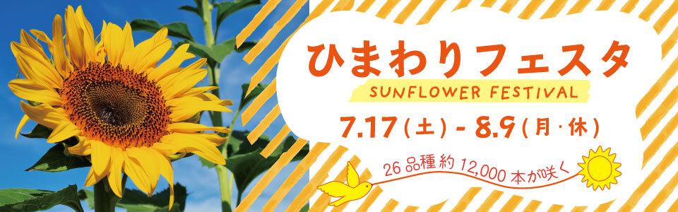 万博記念公園 ひまわりフェスタ|2021年7月17日(土曜日)から8月9日(月曜日・休日)|26品種 約12,000本が咲く