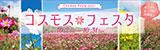 コスモスフェスタ 約2万本 赤ソバの花畑も! 2021年10月2日(土曜日)〜2021年10月31日(日曜日)〜