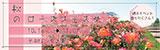 秋のローズフェスタ 平和のバラ園 週末イベント盛りだくさん! 2021年10月16日(土曜日)〜2021年11月7日(日曜日)〜