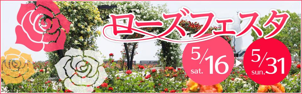 万博記念公園 ローズフェスタ 5月16日(土曜日)から5月31日(日曜日)まで