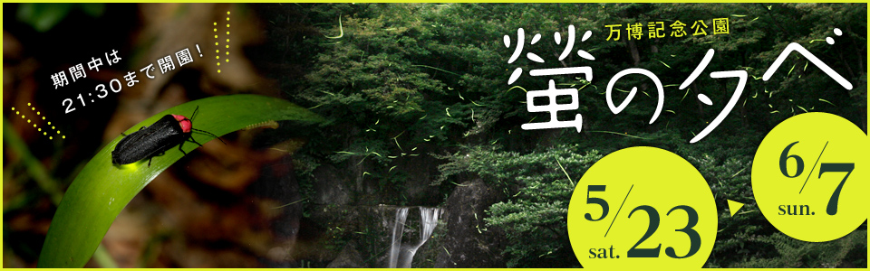 万博記念公園 螢の夕べ 5月23日(土曜日)から6月7日(日曜日)まで