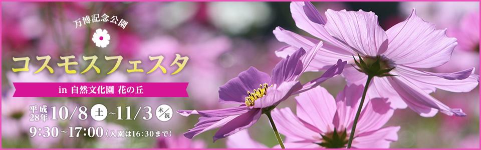 万博記念公園コスモスフェスタ 平成28年10月8日(土曜日)から11月3日(木曜日・祝日)まで 9時30分から17時まで(入園は16時30分まで) ※期間中は無休です。自然文化園 花の丘