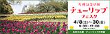 万博記念公園チューリップフェスタ|平成29年4月8日(土曜日)から30日(日曜日)9時30分から17時(入園は16時30分まで)|場所:自然文化園 チューリップの花園