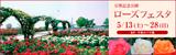 万博記念公園ローズフェスタ|平成29年5月13日(土曜日)から28日(日曜日)|場所:平和のバラ園
