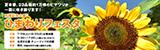 万博記念公園ひまわりフェスタ|平成29年7月29日(土曜日)から8月20日(日曜日)水曜休園|9時30分から17時(入園は16時30分まで)