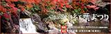 万博記念公園紅葉まつり 平成29年11月3日(金曜日・祝日)から12月3日(日曜日)期間中無休 日本庭園・自然文化園