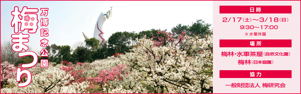 万博記念公園梅まつり|平成30年2月17日(土曜日)から3月18日(日曜日)9時30分から17時 ※水曜休園|場所:梅林・水車茶屋(自然文化園)、梅林(日本庭園)|協力:一般財団法人 梅研究会