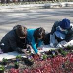 エコパークガーデンプロジェクト(みんなで花壇に花を植えよう!