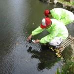 初級 万博環境調査隊 第Ⅰ期養成講座 水生生物調査編