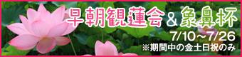 万博記念公園 早朝観蓮会&象鼻杯 7月10日(金曜日)から12日(日曜日)、7月17日(金曜日)から20日(月曜日・祝日)、7月24日(金曜日)から26日(日曜日)