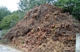剪定枝、間伐材、枯損木
