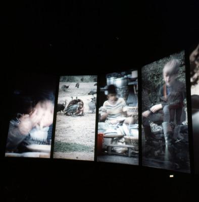 空中劇場の映画「太陽の狩人」