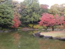 ひょうたん池紅葉1