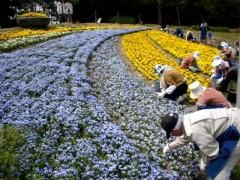 草花とふれあう第一歩!ボランティアで作る花壇の見学会