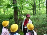 自然観察・自然体験 森での様子