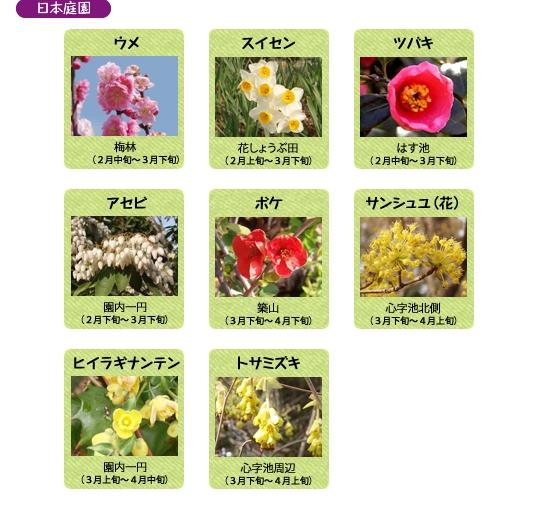 万博記念公園 日本庭園 3月の見ごろの花