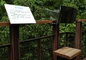 森の集音器