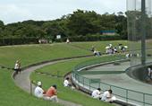 野球場利用風景2