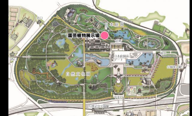日本庭園 園芸植物展示場