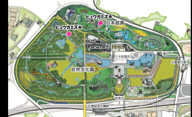 map_hyugamizuki_0320