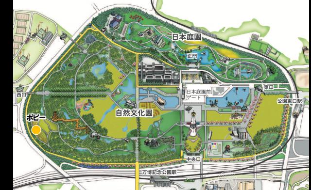 map_poppy_20210326