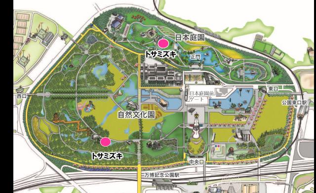 map_tosamizuki