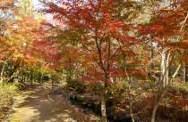 紅葉渓入口