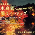 momijinightforest_2020