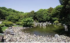 深山の泉(みやまのいずみ)