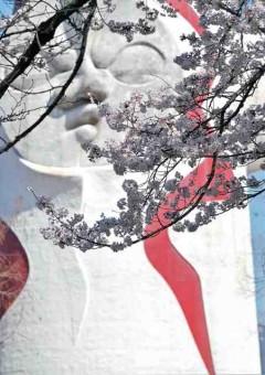 大西隆氏の推薦受賞作品「桜咲く」