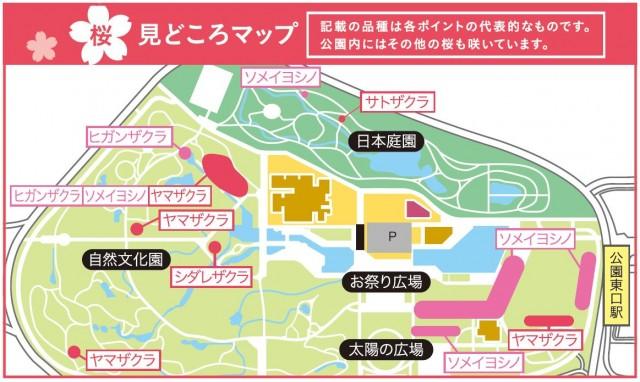 桜見どころマップ