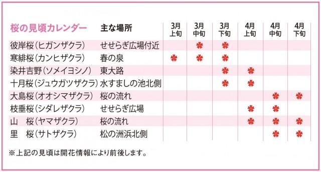 桜の見頃カレンダー