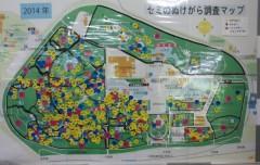 万博記念公園セミのぬけがらマップ2014