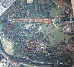 巣箱の利用状況 上空から見た図