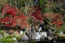 日本庭園滝紅葉2